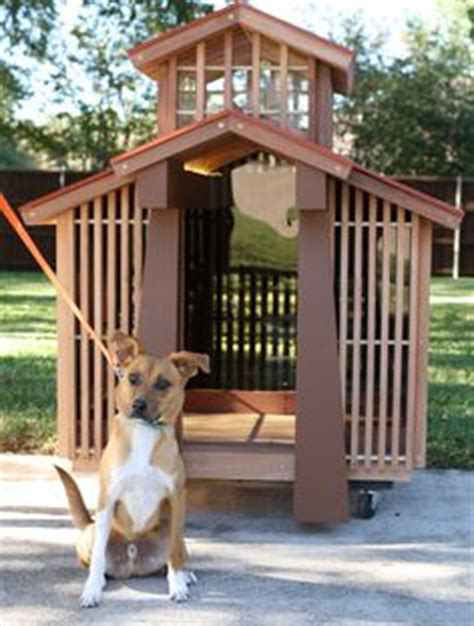 japanese dog house 1000 images about dog stuff on pinterest two dogs for dogs and pets