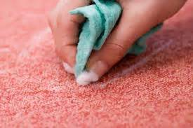 How To Remove Vomit Smell From by 5 Tips For Cleaning Vomit From Carpet
