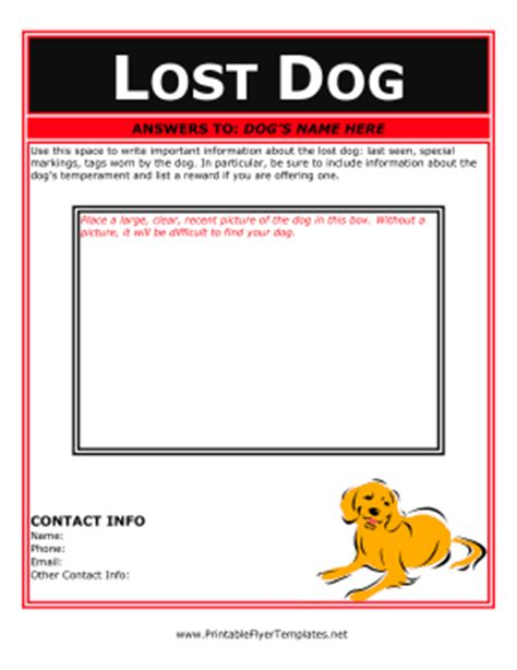 templates for lost pet flyers flyer for lost dog