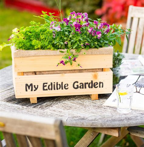 Edible Flower Garden Grow Your Own Edible Flower Garden With Large Planter By Plant And Grow Notonthehighstreet