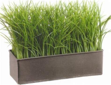 7573 7in grass in metal pot