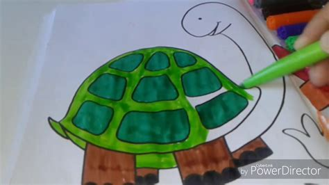 how to color tortoise coloring page for to learn
