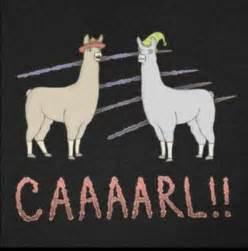 Llamas with hats lol pinterest