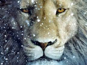 aslan the chronicles of narnia the the witch and