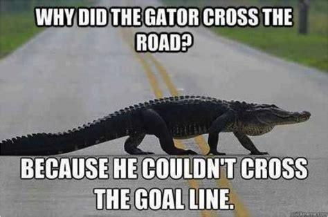 Florida Gator Memes - uf meme png 902 215 600 football pinterest florida