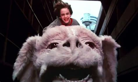flying from neverending story falkor scars the neverending story 20 years later psychiatrist never how