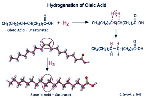 hydration and hydrogenation hydrogenation of unsaturated fats and trans