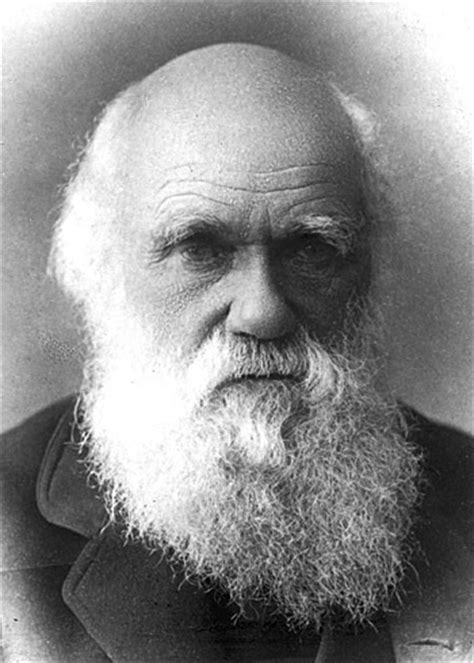 the book that changed america how darwin s theory of evolution ignited a nation books charles darwin d expressions
