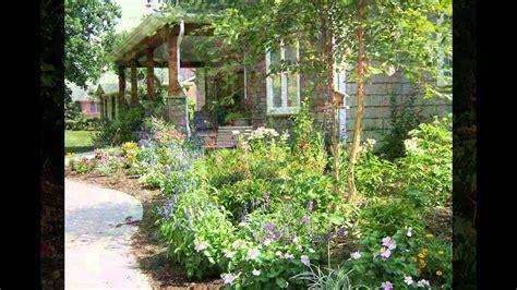 cottage garden plants the best cottage garden plants 2016