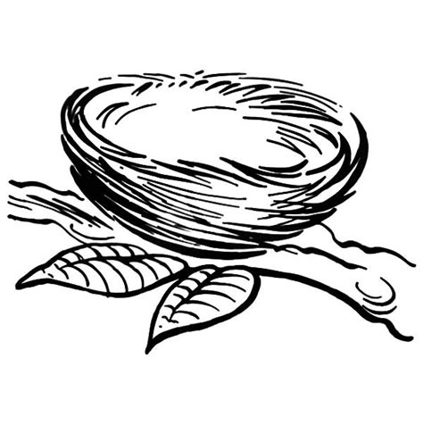 coloring page nest empty bird nest coloring page coloring pages