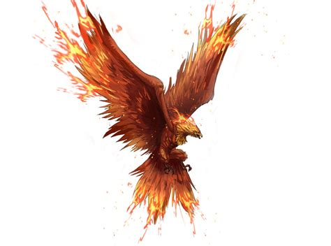 phoenix kevin s phoenix raven tattoo inspiration pinterest