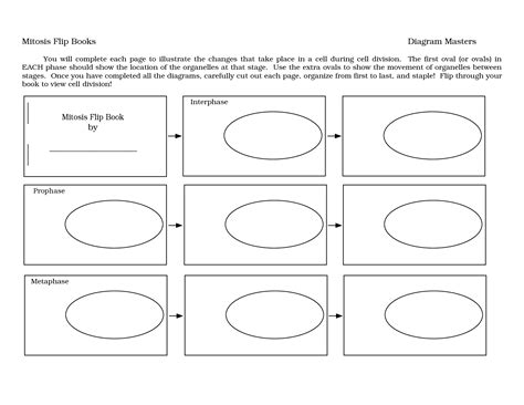 mitosis flip book pictures mitosis flip book template 28 images mitosis flip book
