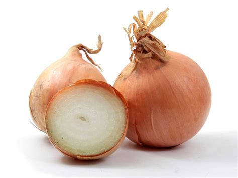 onion link jpg converting img tag in the page url onion devilfinder