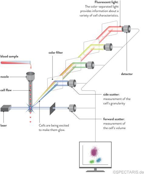 flow cytometry diagram flow cytometer laser images
