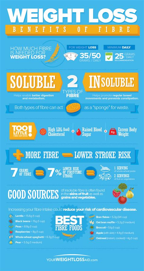Sources Of Dietary Fiber And Weight Loss by Weight Loss Benefits Of Fibre Infographic