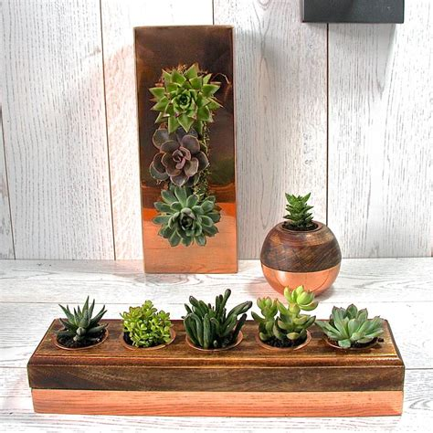 succulent holder copper and wood five succulent holder by london garden