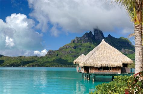 bungalow in the water stunning overwater bungalows