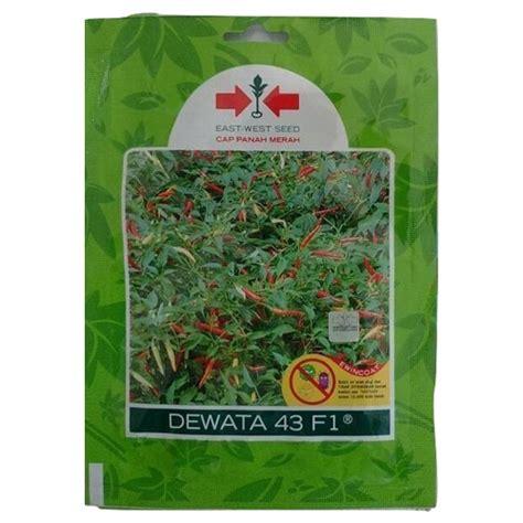 Benih Cabe Dewata jual benih cabe rawit dewata 43 f1 350 biji murah