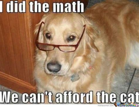 math puppy math by mata96 meme center