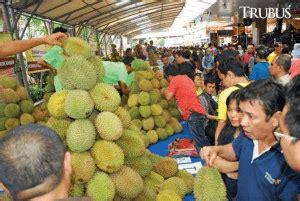 jenis durian unggulan  cocok  dibudidayakan