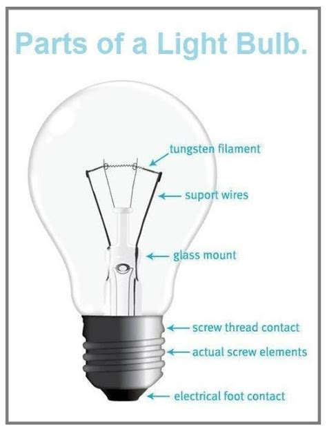 Parts Of A Light Bulb by Basics Parts Of A Light Bulb Eee Community