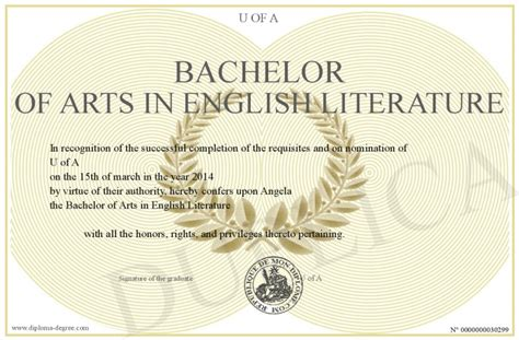 bachelor of arts in literature