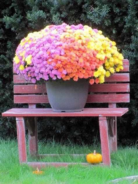 20 Tips For Garden Accessories And Garden Decorations That Garden Decor Accessories