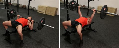 dumbbell bench press vs barbell muscular strength articles