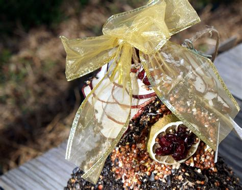 diy gift projects diy edible birdhouse craft project and gift idea