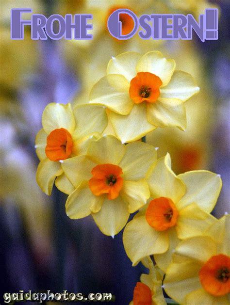 Mit Freundlichen Grüßen Und Frohe Ostern Lustige Ostergru 223 Karten Ostern
