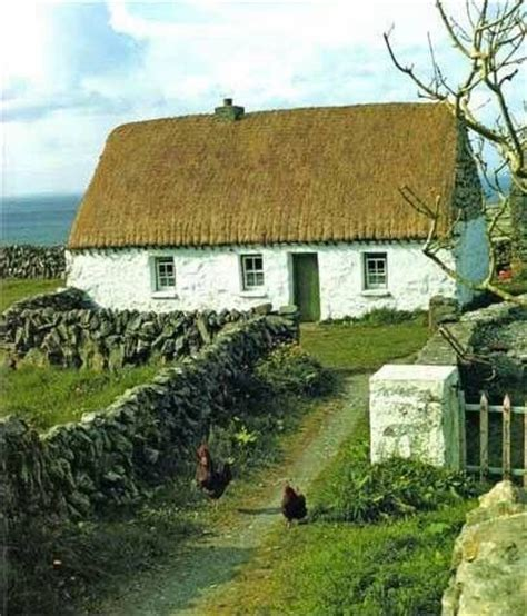 thatched cottages in ireland thatched cottage west of ireland 1970 s ireland