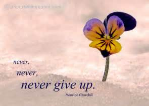 Never give up Quote - Image