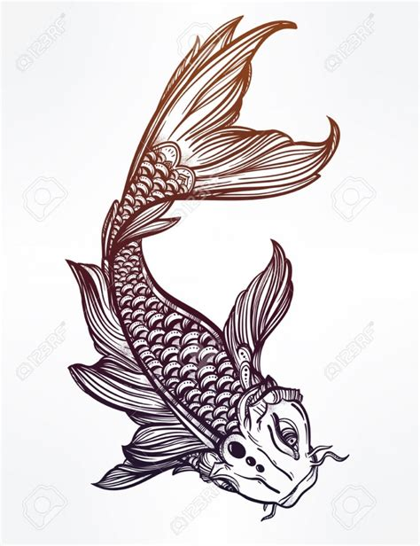 Drawing Koi Fish by Koi Fish Drawing Drawing Pencil