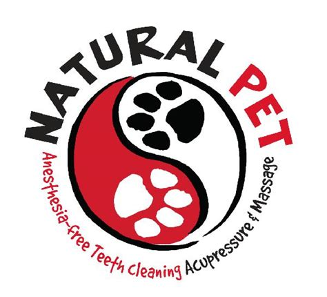 anesthesia free teeth cleaning anesthesia free teeth cleaning news from pet llc