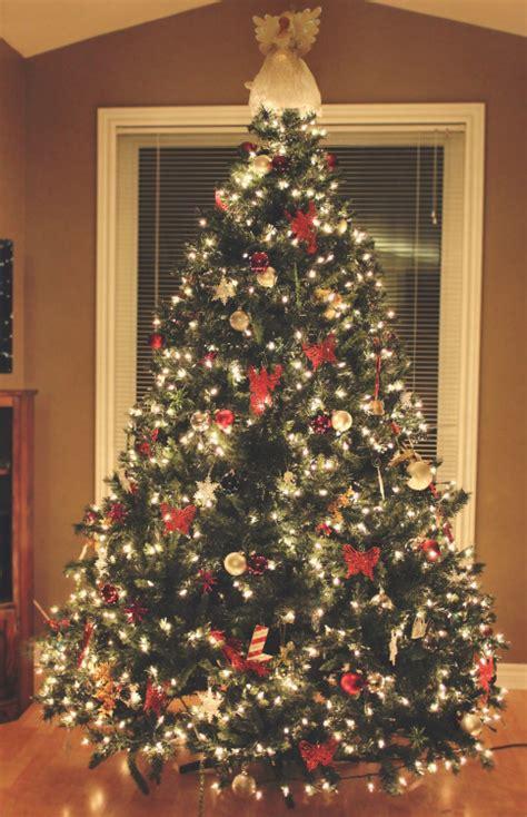 christmas tree tumblr fishwolfeboro