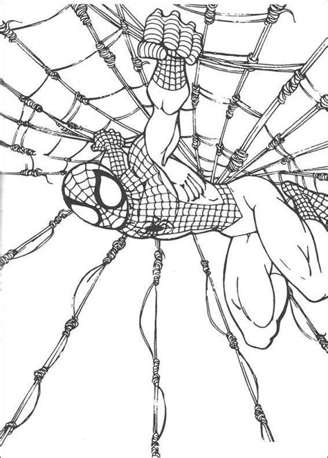 amazing spider man coloring pages for kids to color and