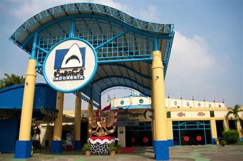 gerbang seaworld picture  sea world jakarta tripadvisor
