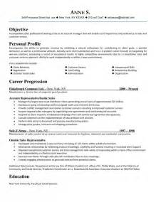 sle of professional resume professional sales resume