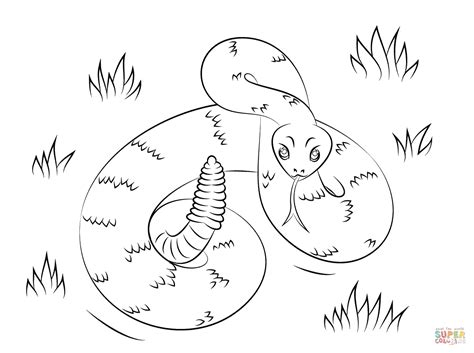 rattlesnake coloring page rattlesnake coloring page free printable coloring pages