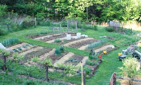 News Mary S Heirloom Seeds Vegetable Gardening On A Slope
