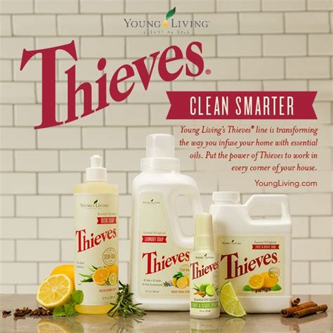 using thieves in your kitchen the oily home companion young living s thieves product line
