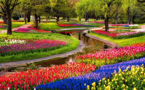 Colorful Garden Flowers Hd Wallpaper 10032 Wallpaper Flower Gardens In