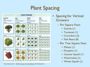 Vertical Tomato Gardening - square foot gardening harvest farm community garden