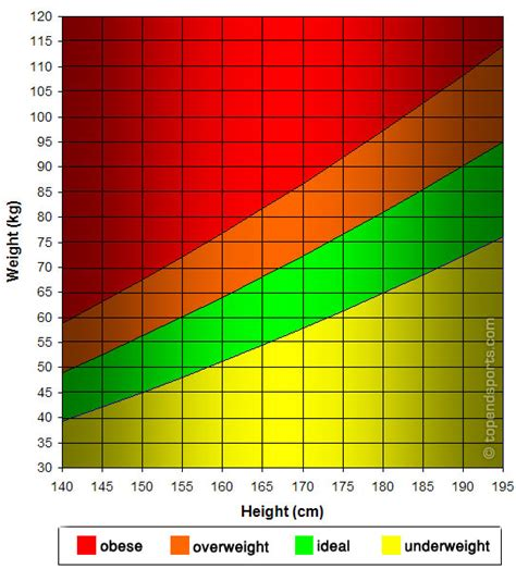 height and weight table height weight graph metric