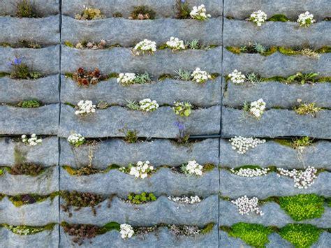 como hacer jardines verticales interiores 20 ideas sorprendentes para hacer jardines verticales en