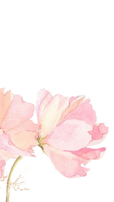 wallpaper handphone tumblr pink vintage floral iphone background lock screen phone