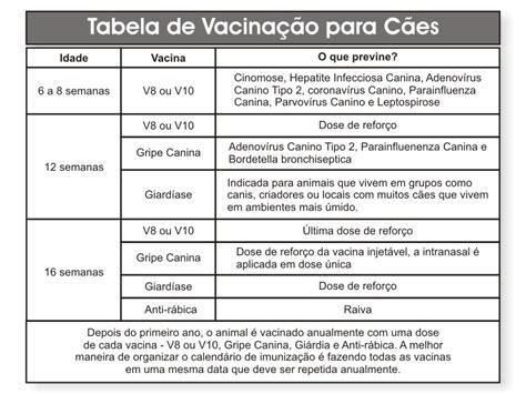Calendario De Cachorro Vacinas E Calend 225 De Vacina 231 227 O Para Cachorros