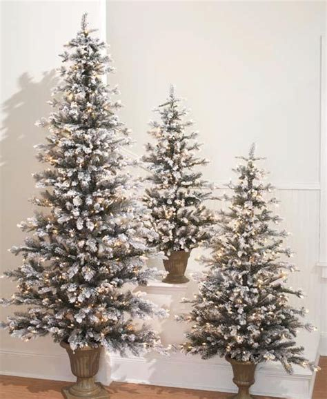 29 news bed bugs in christmas trees raz at shelley b home and new prelit snowy flat trees for 2011