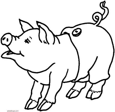 imagenes animales pequeños dibujos de cerdos para colorear