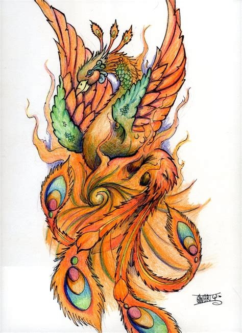 feminine phoenix tattoo designs design by samqwert on deviantart